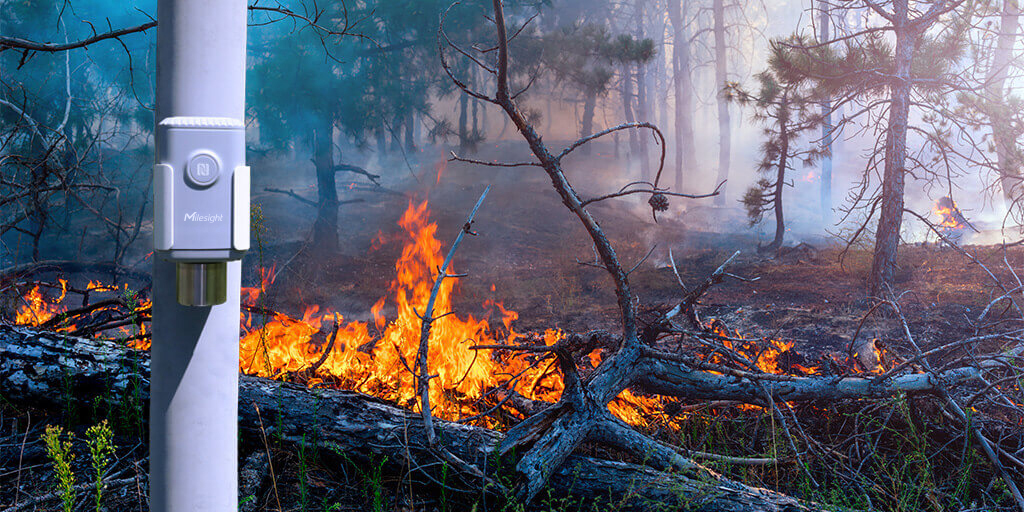 CO2-monitoring-forest-Fire-detection