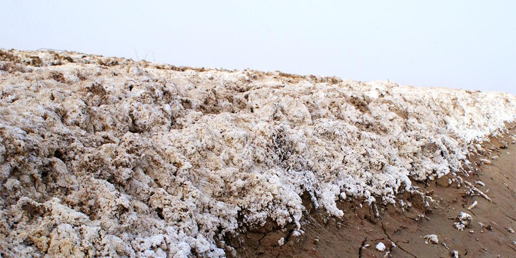 soil-salinity-salt