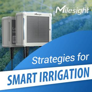 Drawing Up Smart Irrigation Strategies With Milesight LoRaWAN® Solenoid Valve Controller
